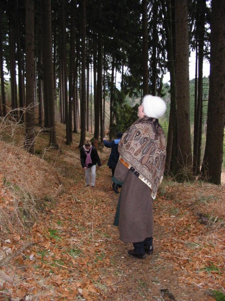 Ausmalbilder Herbst Waldspaziergang : Herbst